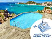 "Piscine bois "" Baléares "" - 6.50 x 4.40 x 1.31 m + Robot Dolphin""Splash"""