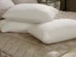 "Oreiller mémoire de forme ""Doudou"" - 40 x 60 cm - Blanc"