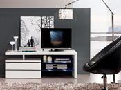 "Meuble TV ""Diana"" - 120x42x43,1 cm - MDF blanc"