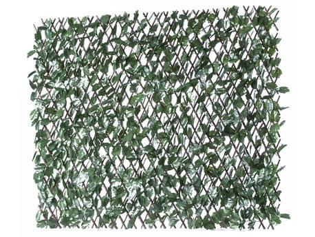 """Clôture en treillis de saule """"Fragon"""" - 200 x 100 cm - Vert"""