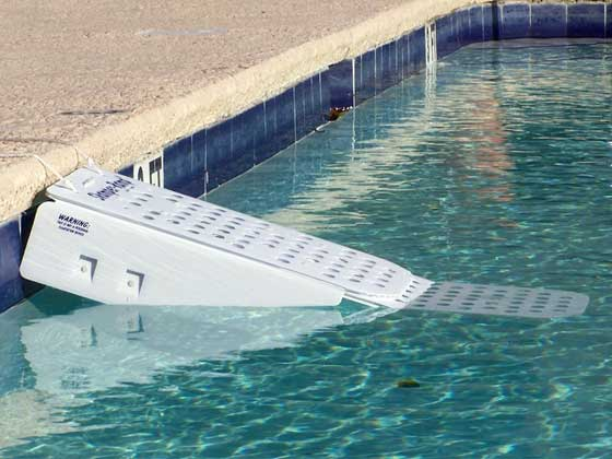 Rampe de sortie flottante pour animaux skamper ramp 3 for Piscine pour chien